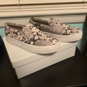 Steve Madden GILLS Natural Snake Skin Shoes